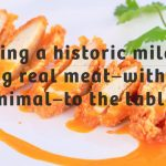 memphis-meats-meso-iz-epruvete