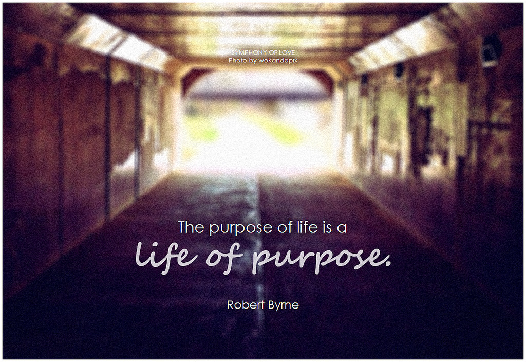 purpose-of-life-svrha