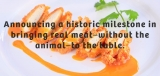 Da li ćete jesti meso iz epruvete?